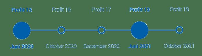 Uitleverbeleid Profit 17